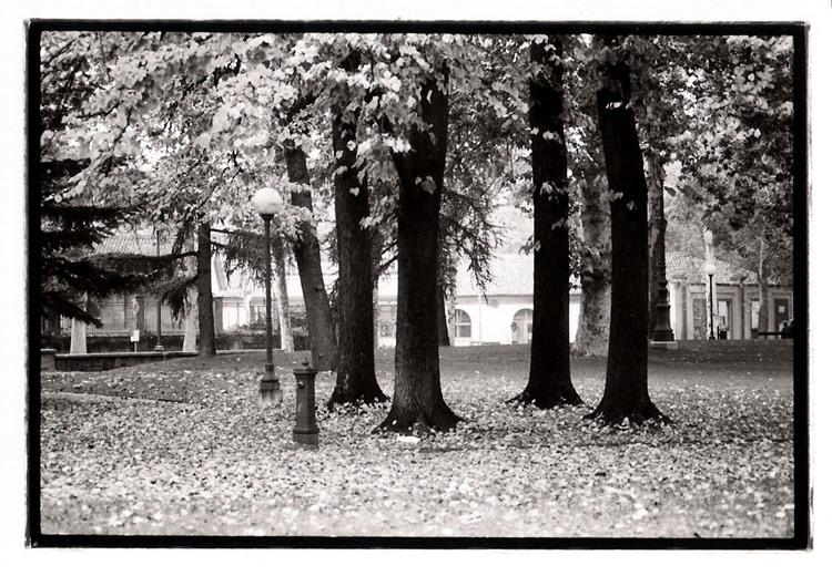 Narnia-Reggio_Emilia_2005