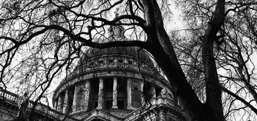 """Inaugurazione """"Into the trees"""""""